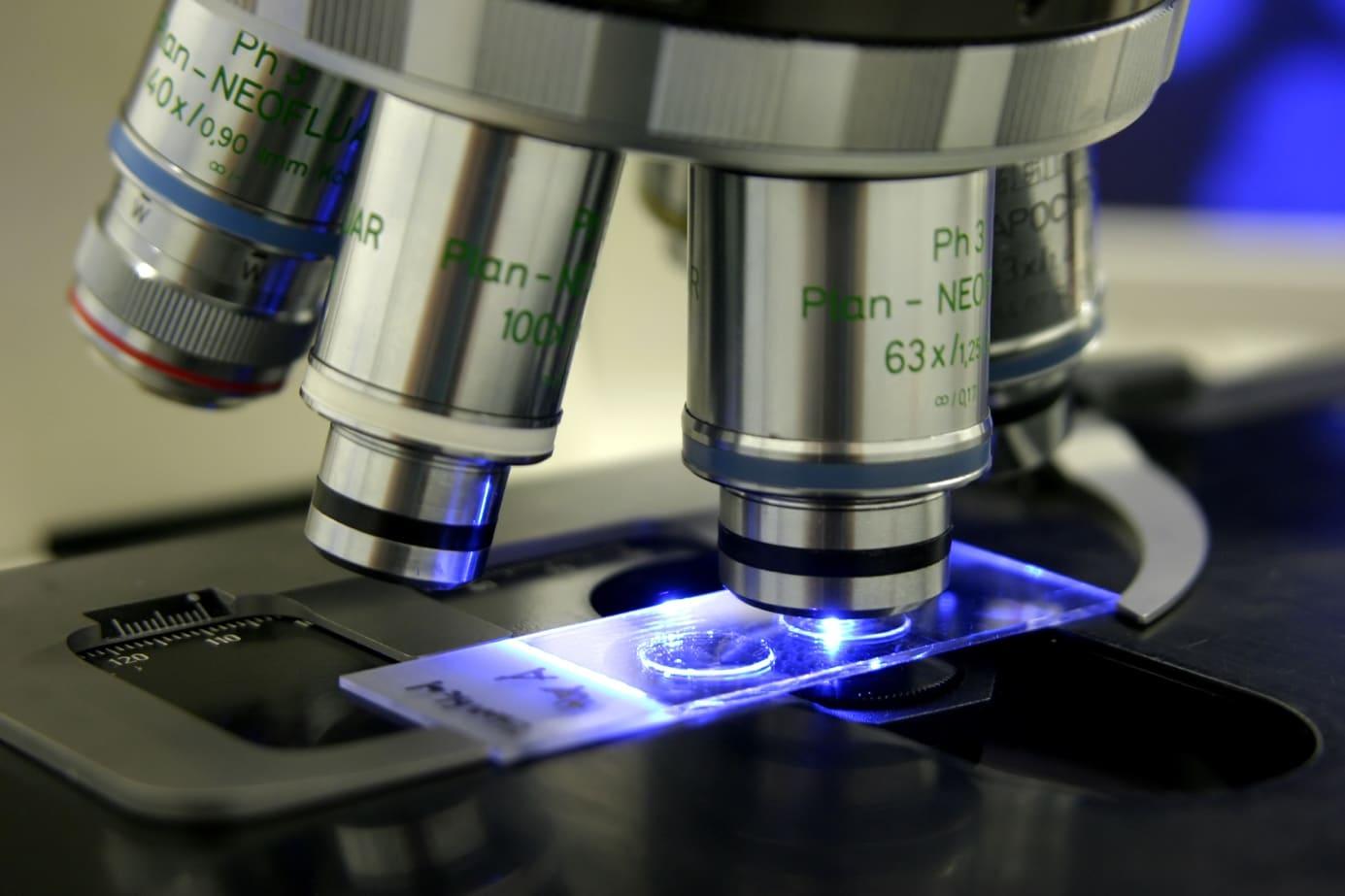 OVIklinika Laboratorium Aktywacja oocytow