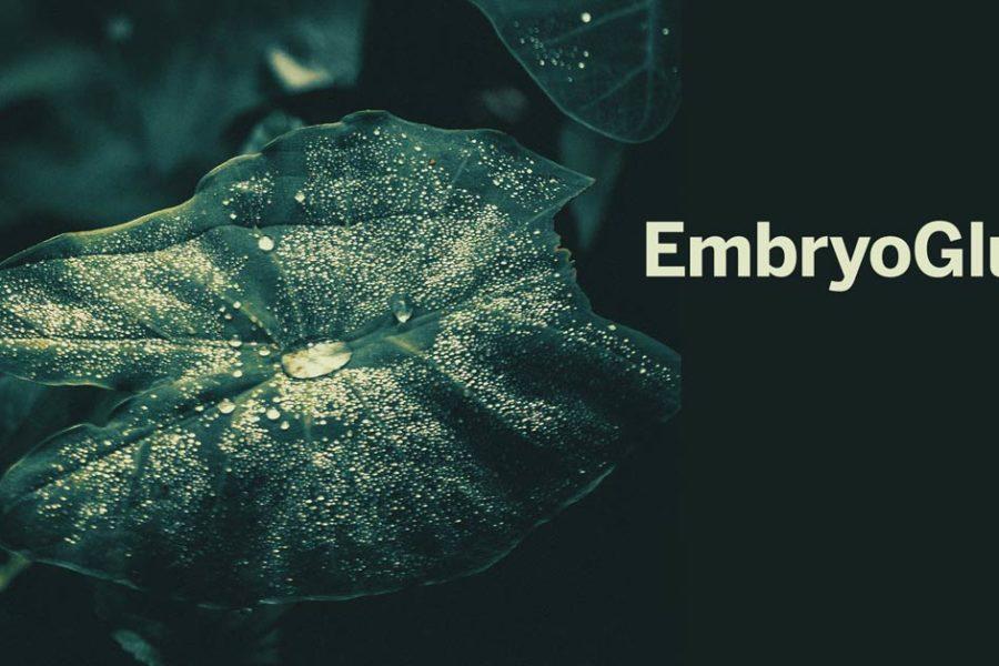 Co to jest EmbryoGlue?